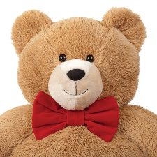 Valentines Day Teddy Bear with Red Bow